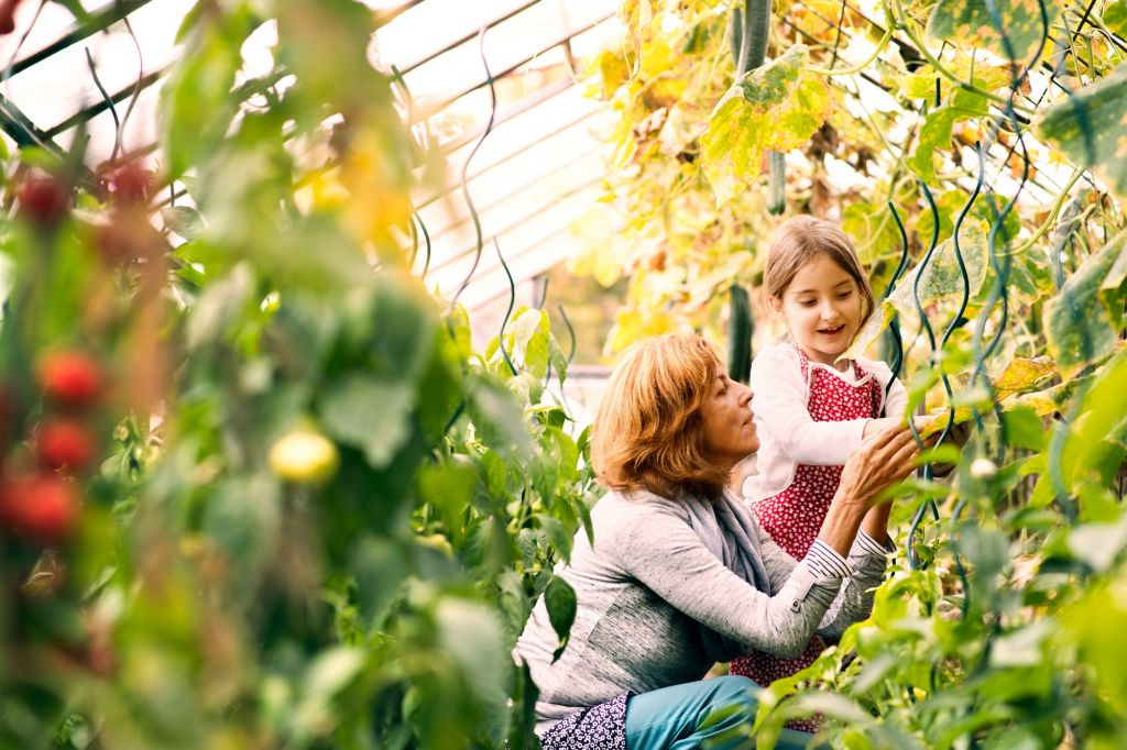 Mindful walk or nature walk, allows your children to get fresh air and learn how to be in the present